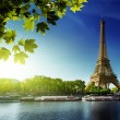 Seine in Paris with Eiffel tower — Stock Photo #12698582