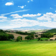 Farmland in Tuscany, Italy - Foto Stock