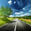 Asphalt road in Tuscany Italy — Stock Photo #12699056