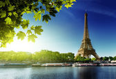 Seine in Paris with Eiffel tower — Foto Stock