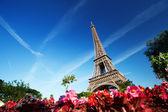 De toren van eiffel, paris, frankrijk — Stockfoto