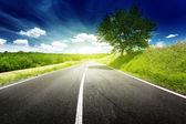 Asphalt road in Tuscany, Italy — Stock Photo