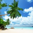 Beach on Mahe island in Seychelles — Stock Photo #14148713