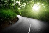 Carretera vacía en la selva de las islas seychelles — Foto de Stock