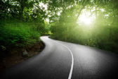 Empty road in jungle of Seychelles islands — Stockfoto