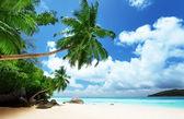 Beach op mahe island in seychellen — Stockfoto