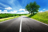 Asphalt road in Tuscany, Italy — Stock Photo