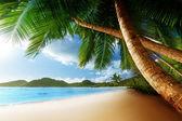 Tramonto sulla spiaggia, isola di mahe, seychelles — Foto Stock