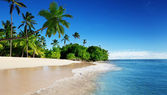 Caribbean sea and palms — Stock Photo