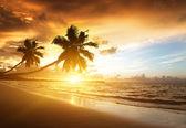 Solnedgång på stranden i karibiska havet — Stockfoto