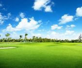 Golfové hřiště — Stock fotografie