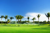 Irrigation golf course — Stock Photo