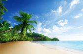 закат на пляже anse такамака острова маэ, сейшельские острова — Стоковое фото