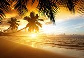 Coucher de soleil sur la plage de la mer des caraïbes — Photo