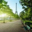 Sunny morning and Eiffel Tower, Paris, France — Stock fotografie