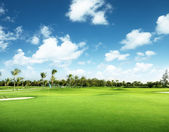 Golf course — Foto de Stock