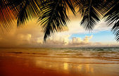 Sunset on the beach of caribbean sea — Foto Stock