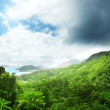 Jungle of seychelles island — Stock Photo #18927311
