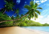 Sunset on beach, Mahe island, seychelles — Stock Photo