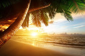 Sunrise on Caribbean beach — Stockfoto
