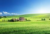 Toscana landskap med typisk bondgård, italty — Stockfoto