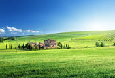 Tuscany landscape with typical farm house, Italty — Stock fotografie