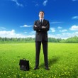 Stock Photo: Businessman on spring field