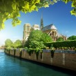 Stock Photo: Notre Dame Paris, France