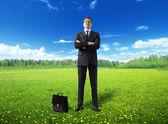 Businessman on spring field — Stock Photo
