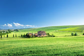 Tuscany landscape with typical farm house, Italty — Φωτογραφία Αρχείου