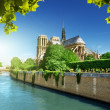 Notre Dame Paris, France — Stock Photo #23943919