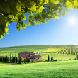 Tuscany landscape with typical farm house - 图库照片
