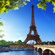 Stock Photo: Eiffel tower, Paris. France