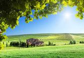 Toscana landskap med typisk bondgård — Stockfoto