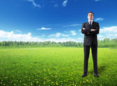 Businessman on spring field — Stock Photo