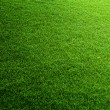 Green grass background — Stock Photo #24277613