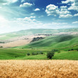 Summer landscape of Tuscany, Italy - Stock Photo