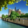Notre Dame Paris, France - Foto Stock