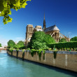 Notre Dame Paris, France — Stock Photo #24277765