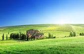 Panorama con casa colonica tipica toscana — Foto Stock