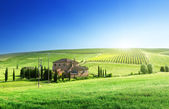 Tuscany landscape with typical farm house — Stok fotoğraf