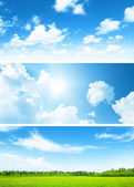 Banners of field of spring grass and sky — Stock Photo