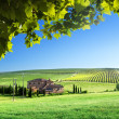 Tuscany landscape with typical farm house - Stockfoto