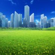 Field of spring flowers and modern city — Stock Photo