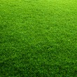 Green grass background — Foto de stock #24846837