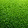 Green grass background — Foto Stock #24846837