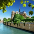 Notre Dame Paris, France — Stock Photo