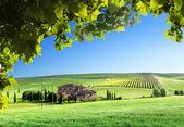 Toskana-landschaft mit typischen bauernhaus — Stockfoto