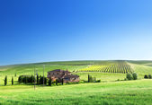 Krajobraz toskanii z typowym wiejskim domu — Zdjęcie stockowe