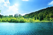 Lake in forest of Croatia — Foto Stock